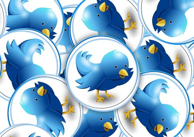 twitter-(lots of twitter birds)